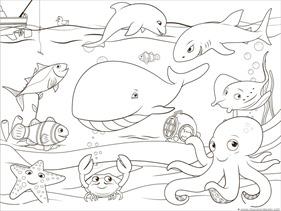 Ocean Animals Coloring