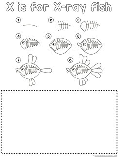 X-Ray Fish Drawing Tutorial
