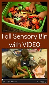 Fall-Sensory-Bin7