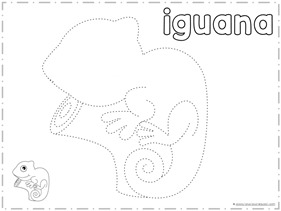 Trace and Draw an IGUANA