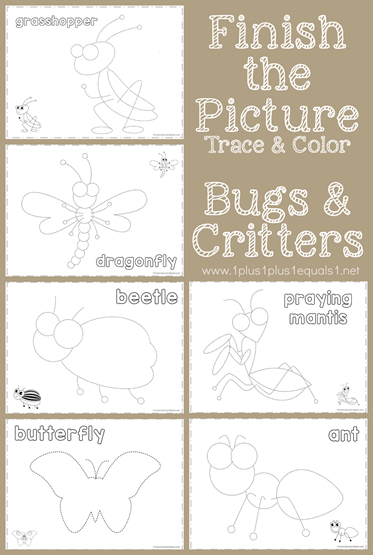 Finish the Picture Trace and Color Bugs