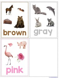 Color Flashcards (1)