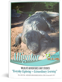 alligater-unit-kelli