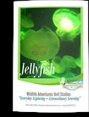 jellyfish-unit-kelli