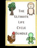 life-cycle-bundle
