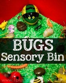 Bug-Sensory-Bin7