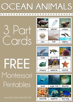 Ocean Animals Montessori Printables Nomenclature 3 Part Cards