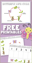 Free Butterfly Life Cycle Printables[5]