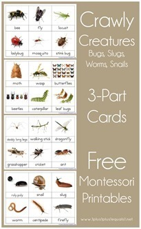 Montessori-Nomenclature-Printables-3[1]