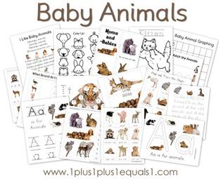 Baby-Animals6