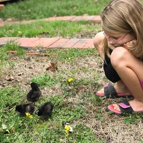 Chicks 3.20.18_-4