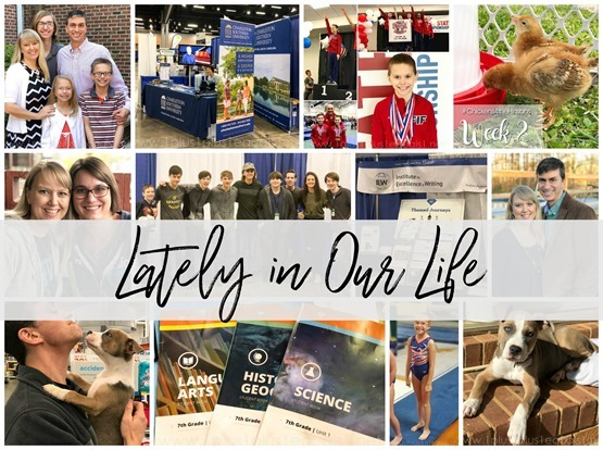 Lately in Our Life April 2018