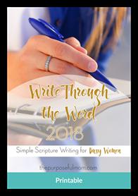 WriteThroughTheWord Mockup