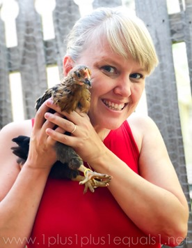 Chickens Week 6 (25 of 14)