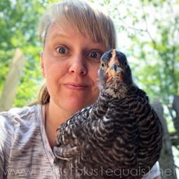 Chickens Week 7 (3 of 10)