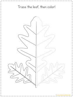 Fall Tracing Printables (7)