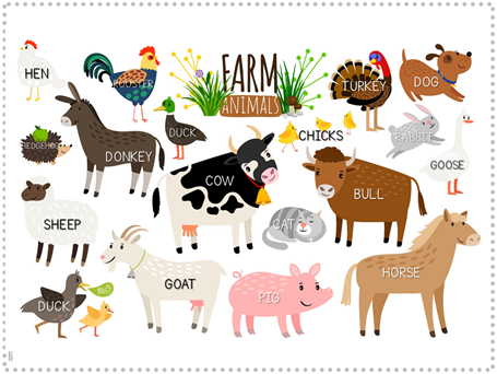 Farm Animal Fun Pack (3)