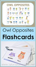 Owl Opposites Flashcards Printable