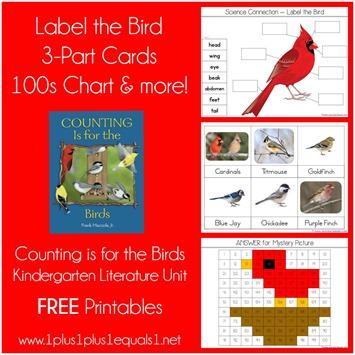 Birds Kindergarten Literature Unit Printables