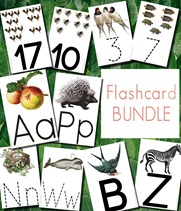 FlashcardBundlePreviewNEW