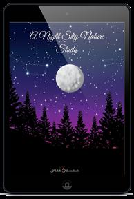Night-Sky-Nature