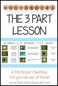 The Montessori 3 Part Lesson