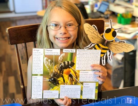 Ivy Kids Bee Theme